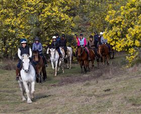 Burnelee Excursions on Horseback - Melbourne Tourism